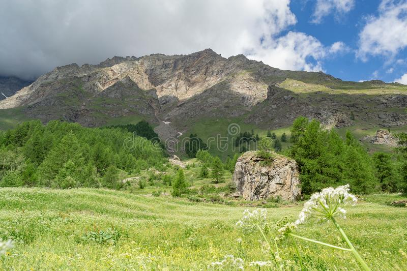Προκαλούν αλπικό πανόραμα με τα σύννεφα και τα δέντρα βουνών στοκ φωτογραφία