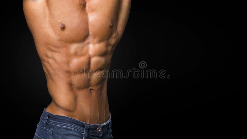 Προκλητικό μυϊκό σώμα και γυμνός κορμός που παρουσιάζουν τέλεια ABS στοκ εικόνες