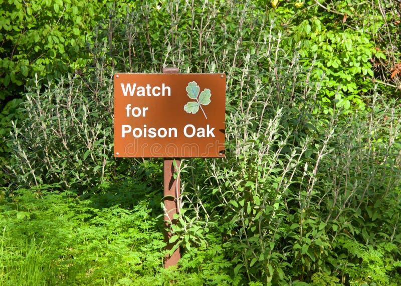 Προσέξτε το δηλητήριο το δρύινο προειδοποιητικό σημάδι στο ίχνος στοκ φωτογραφίες