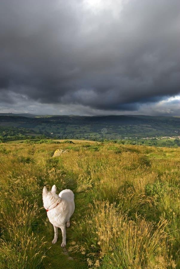 Προσεγγίσεις θύελλας στοκ φωτογραφίες με δικαίωμα ελεύθερης χρήσης