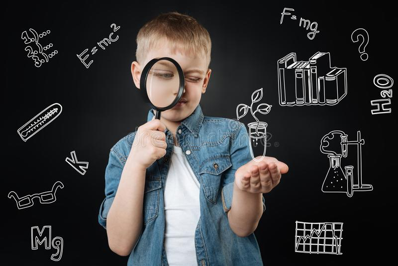 Προσεκτικό αγόρι που εξετάζει το νεαρό βλαστό μέσω μιας ενίσχυσης - γυαλί στοκ φωτογραφίες