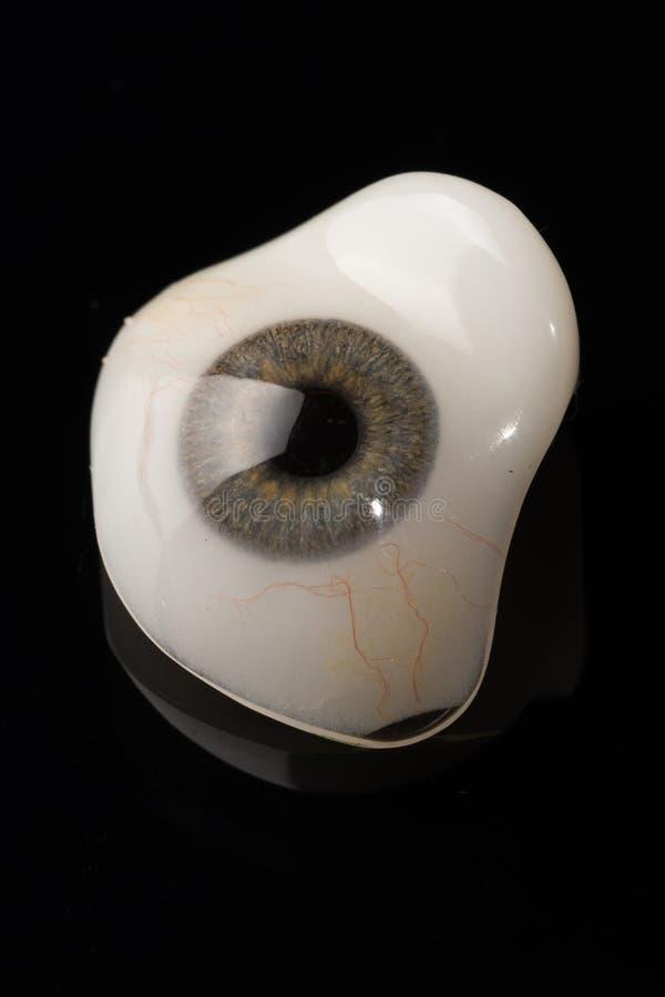 Προσθετική ή οφθαλμική πρόσθεση ματιών γυαλιού στο Μαύρο στοκ φωτογραφία με δικαίωμα ελεύθερης χρήσης