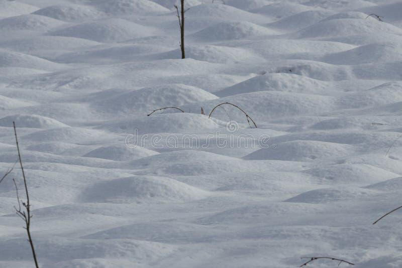 Προσκρούσεις χιονιού στοκ φωτογραφία