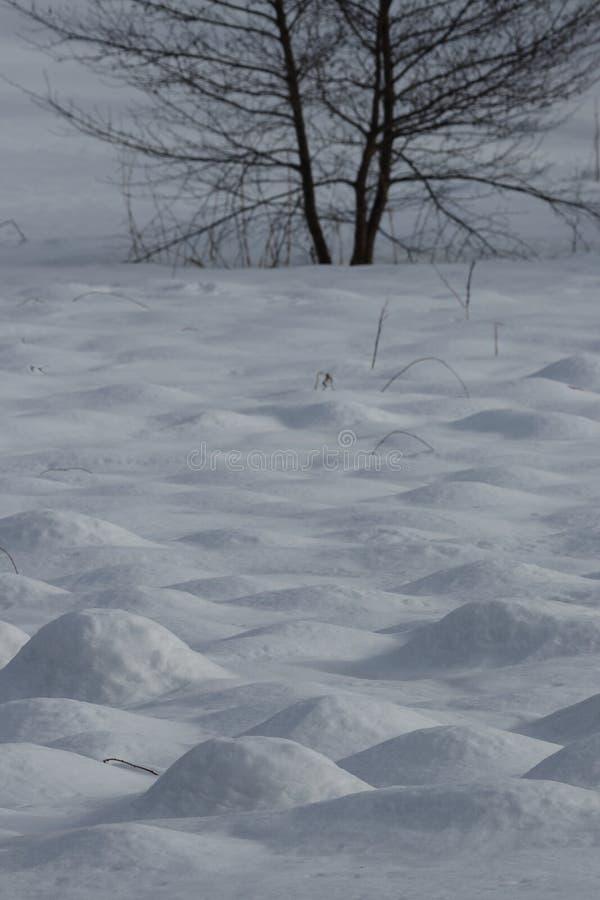 Προσκρούσεις χιονιού στοκ εικόνα με δικαίωμα ελεύθερης χρήσης