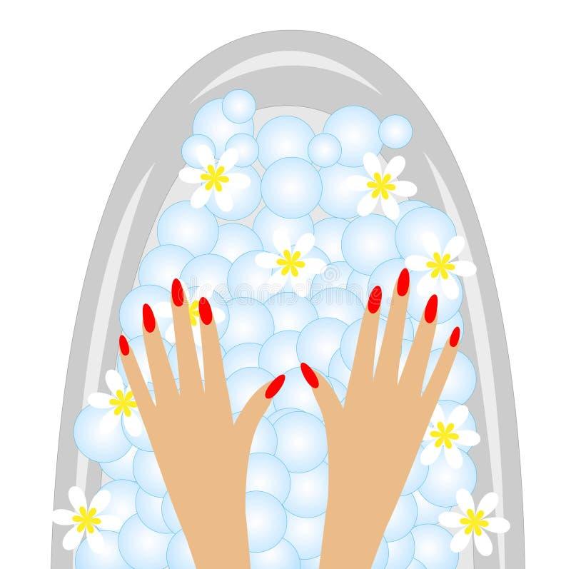 Προσοχή των χεριών, birdbaths με τα λουλούδια του camom απεικόνιση αποθεμάτων