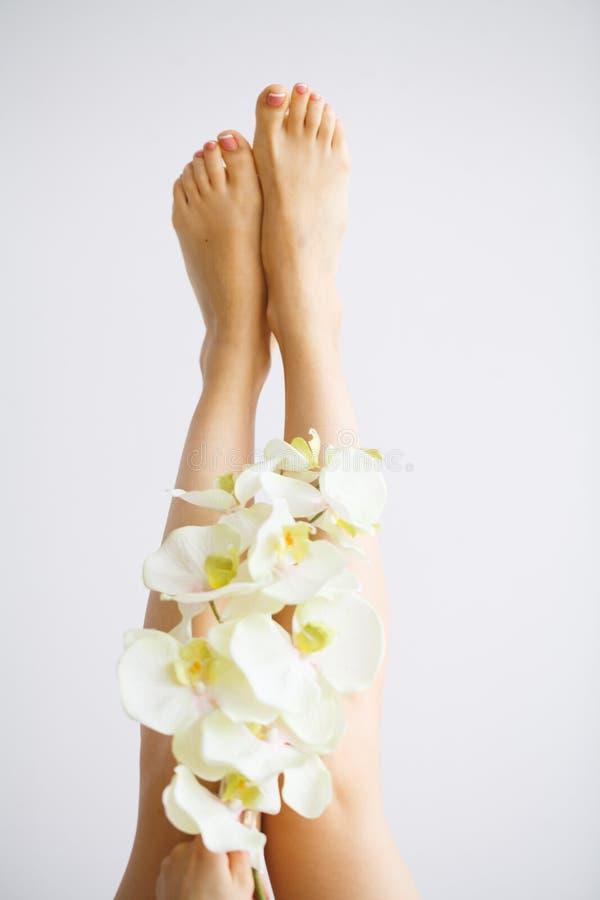 Προσοχή χεριών και καρφιών Όμορφα πόδια γυναικών ` s με τέλειο Pedicure Ημέρα ομορφιάς τα λουλούδια ορχιδεών εκμετάλλευσης κοριτσ στοκ εικόνα με δικαίωμα ελεύθερης χρήσης
