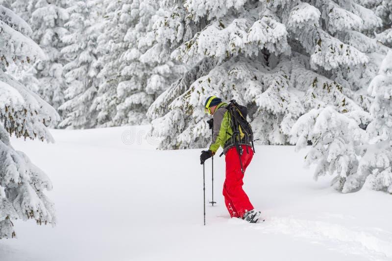 Προσπάθειες τυχοδιωκτών μέσω του βαθιού χιονιού στα πλέγματα σχήματος ρακέτας στοκ εικόνες
