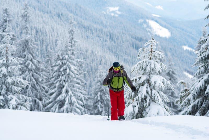 Προσπάθειες τυχοδιωκτών μέσω του βαθιού χιονιού στα πλέγματα σχήματος ρακέτας στοκ φωτογραφίες με δικαίωμα ελεύθερης χρήσης