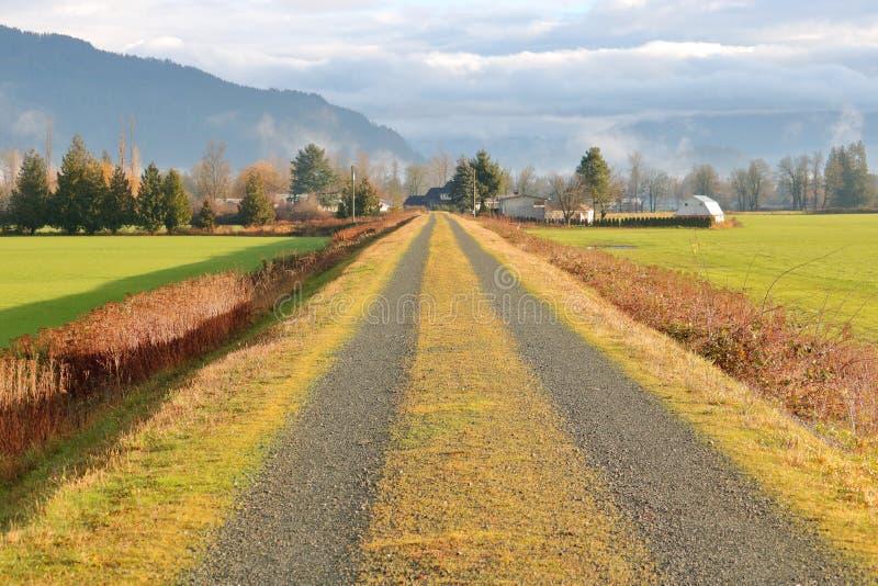 Προστασία και ανάχωμα αγροτικής γης στοκ εικόνες