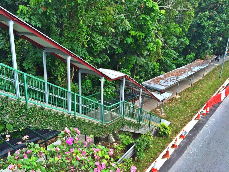 Προφυλαγμένη διάβαση πεζών στη Σιγκαπούρη στοκ φωτογραφία με δικαίωμα ελεύθερης χρήσης