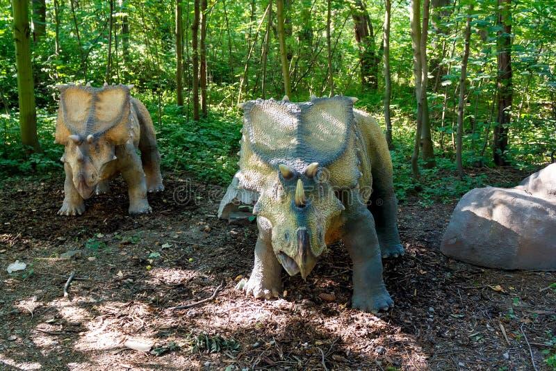 Προϊστορικός δεινόσαυρος triceratops στη φύση στοκ φωτογραφία