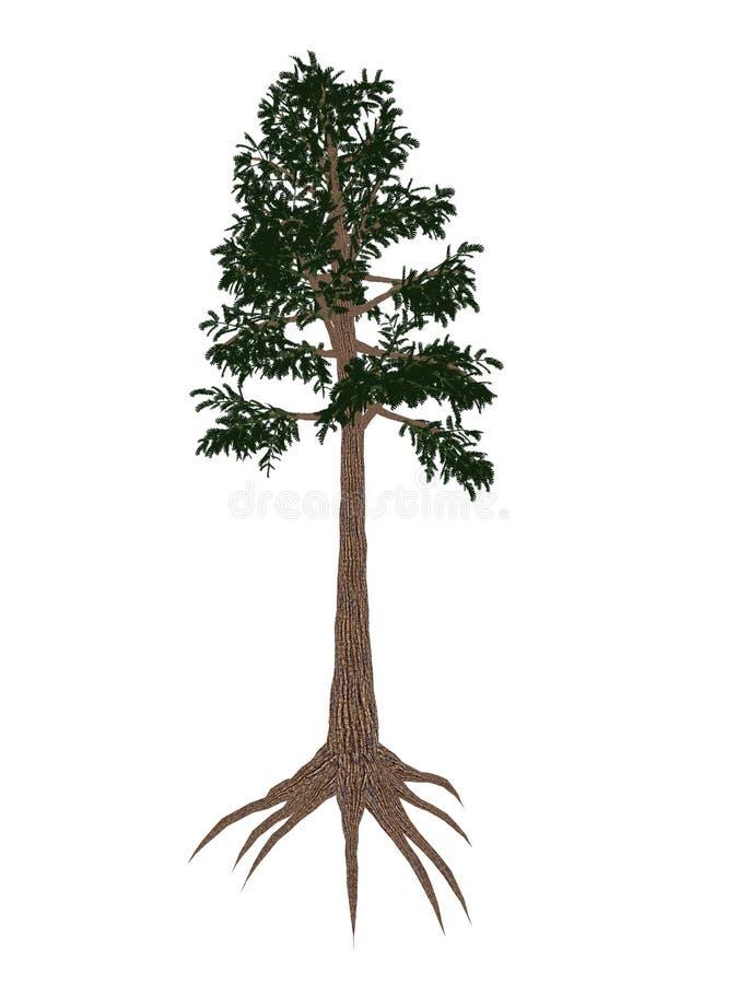 Προϊστορικό δέντρο Archaeopteris - τρισδιάστατο δώστε ελεύθερη απεικόνιση δικαιώματος