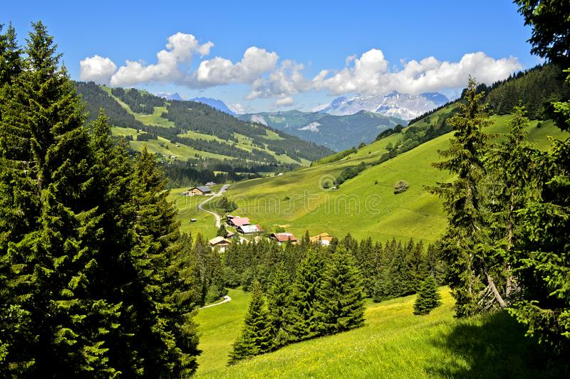 Προ-αλπικό τοπίο με τα λιβάδια και τα δάση το καλοκαίρι στοκ φωτογραφίες με δικαίωμα ελεύθερης χρήσης