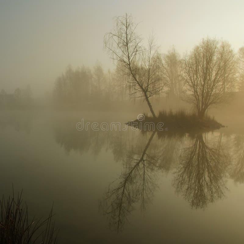 πρωί ελαφριάς ομίχλης στοκ φωτογραφία με δικαίωμα ελεύθερης χρήσης