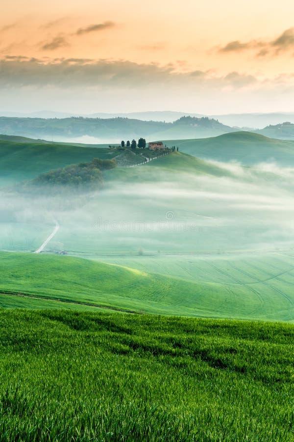 Πρωί κοντά στη Σιένα, Τοσκάνη, Ιταλία στοκ εικόνες