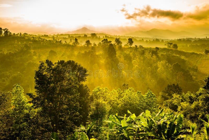 Πρωί με clouds2 στοκ εικόνα με δικαίωμα ελεύθερης χρήσης