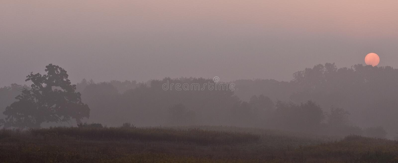 πρωί υδρονέφωσης γραμμών πέρ& στοκ εικόνα