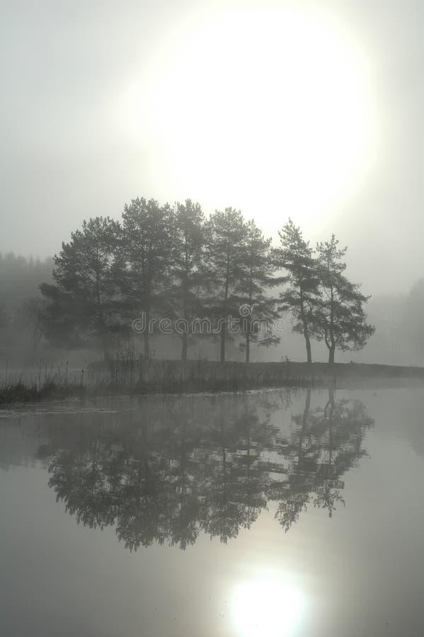 πρωί υδρονέφωσης στοκ φωτογραφία με δικαίωμα ελεύθερης χρήσης