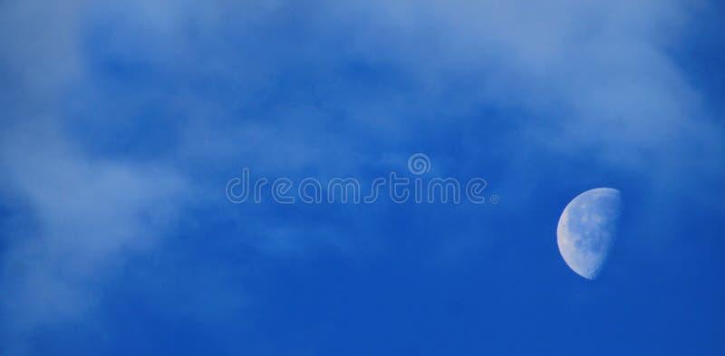 Πρωί φεγγαριών της Καρολίνας στοκ φωτογραφία με δικαίωμα ελεύθερης χρήσης