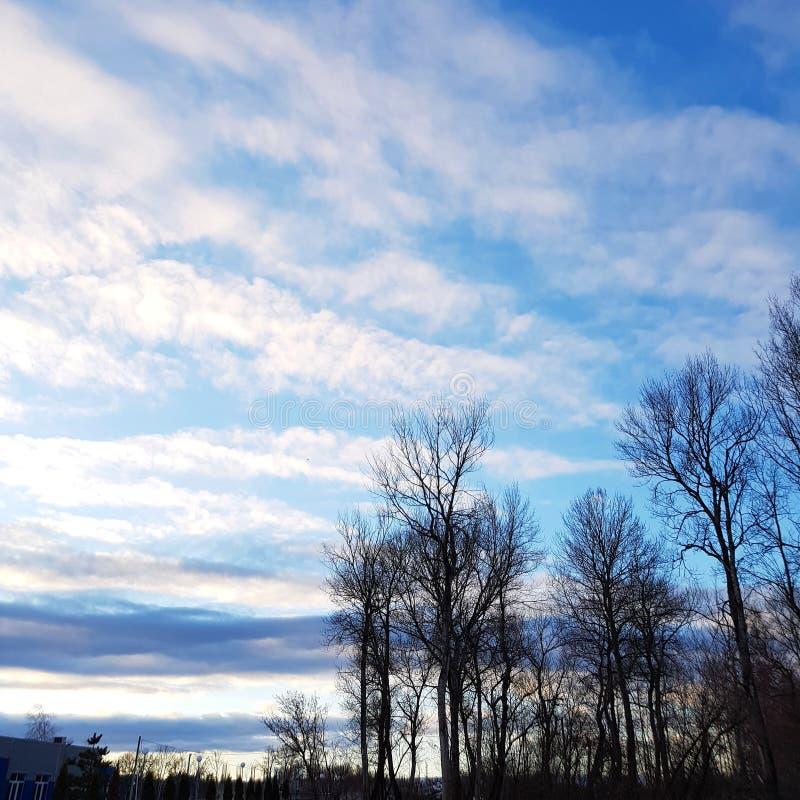 Πρωί Χειμώνας Ημέρα Φεβρουαρίου στοκ εικόνες με δικαίωμα ελεύθερης χρήσης