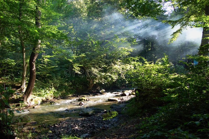 Download πρωί στοκ εικόνες. εικόνα από ρουμανία, nikon, ήλιος - 13186370