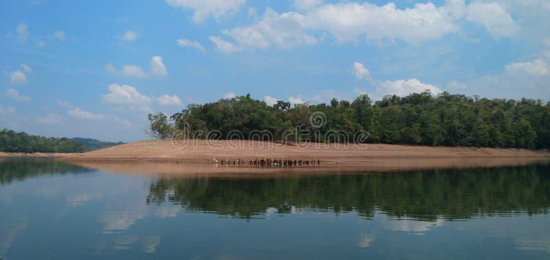 Πρωί Trivandrum Neyyar στοκ εικόνες