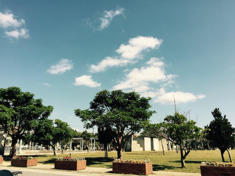 Πρωινό πάρκο στοκ εικόνα