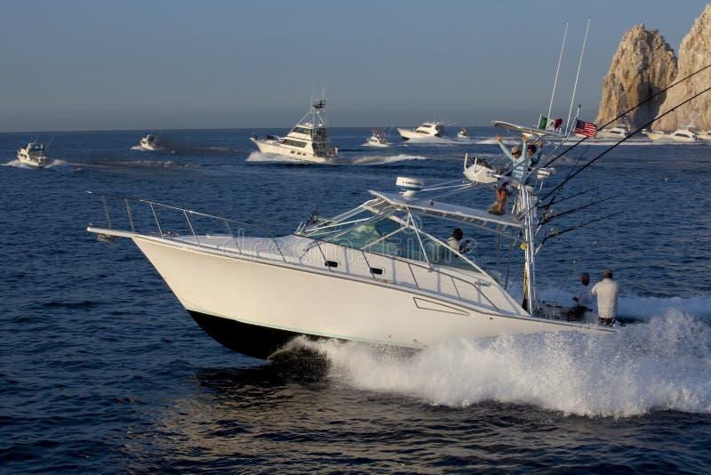 Πρωταθλήματα αθλητικής αλιείας σε Cabo SAN Lucas, Μεξικό στοκ εικόνα με δικαίωμα ελεύθερης χρήσης