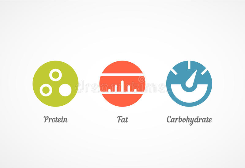 Πρωτεΐνη, λίπος και υδατάνθρακας διανυσματική απεικόνιση