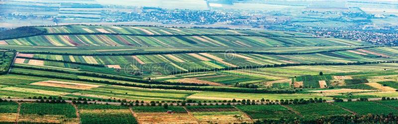 Πρόσθετο ευρύ πανόραμα των μικρών πράσινων τομέων ως πάπλωμα στοκ φωτογραφία