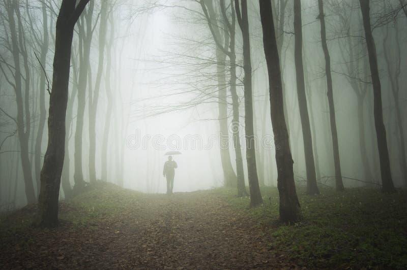 πρόσθιο ελαφρύ άτομο misty στ&omicro στοκ φωτογραφίες