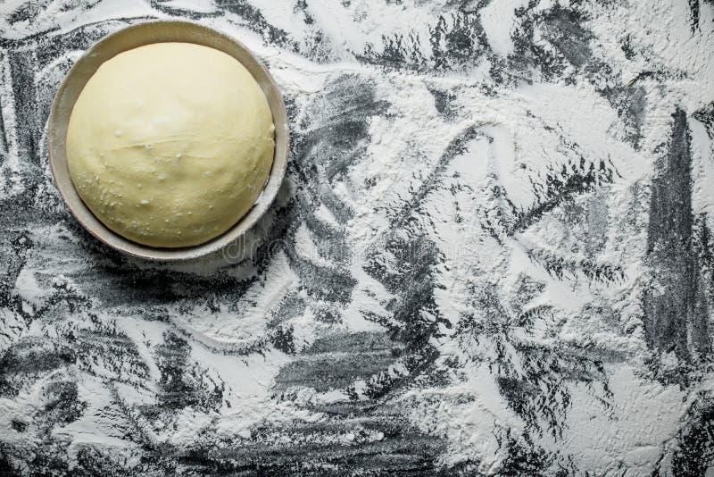 Πρόσφατα έτοιμη ζύμη στο κύπελλο στοκ εικόνα