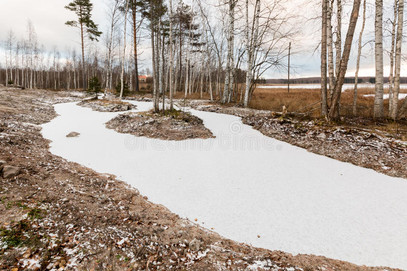 Πρόσφατα γίνοντας υγρότοπος κατεργασίας ύδατος που καλύπτεται από τον πάγο το φθινόπωρο στοκ φωτογραφία με δικαίωμα ελεύθερης χρήσης