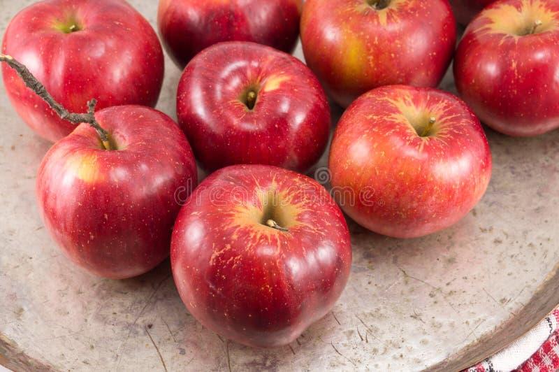 Πρόσφατα επιλεγμένα κόκκινα μήλα σε ένα πιάτο στοκ φωτογραφία με δικαίωμα ελεύθερης χρήσης
