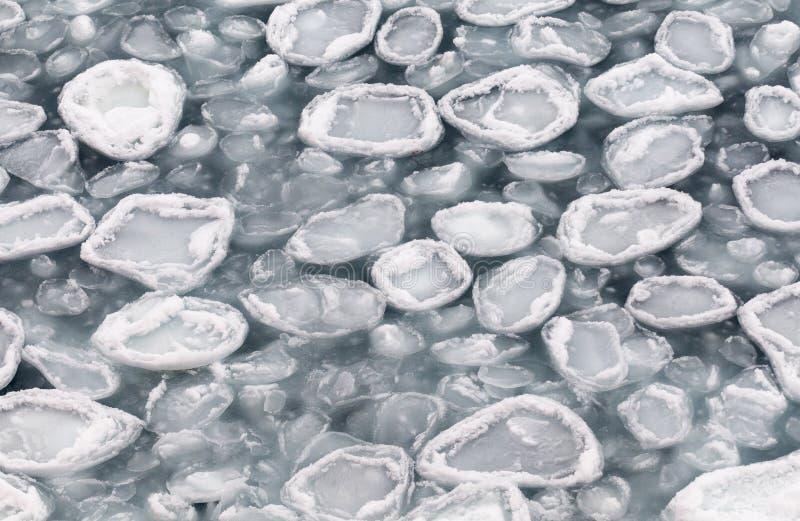 Πρόσφατα σχηματισμένος πάγος τηγανιτών, Ανταρκτική στοκ φωτογραφία