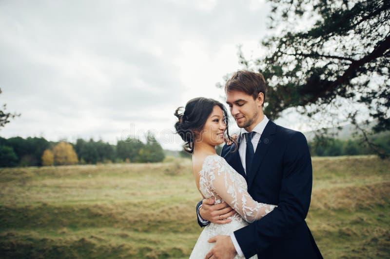 Πρόσφατα το ζεύγος που φιλά tenderly μεταξύ των κομψών δέντρων στοκ φωτογραφίες