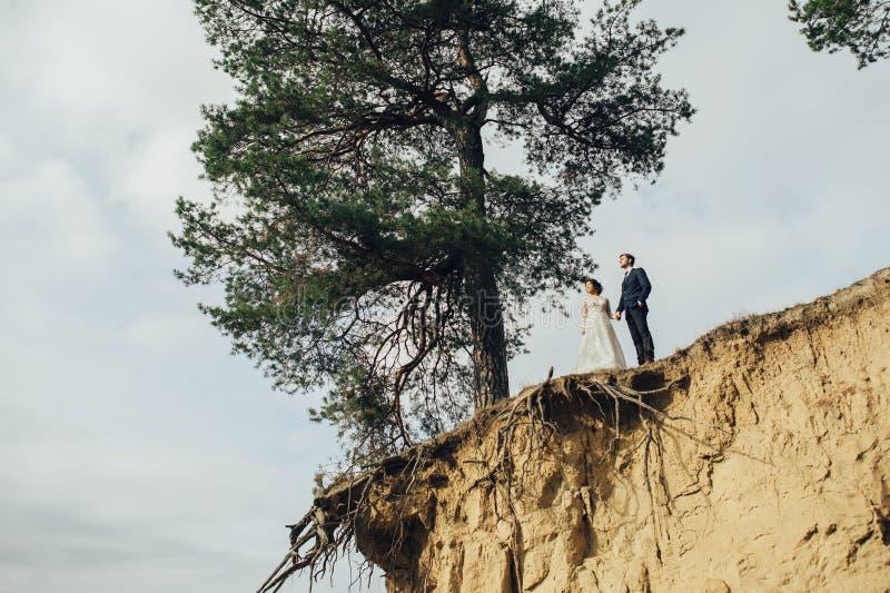 Πρόσφατα το ζεύγος που φιλά tenderly μεταξύ των κομψών δέντρων στοκ φωτογραφία με δικαίωμα ελεύθερης χρήσης