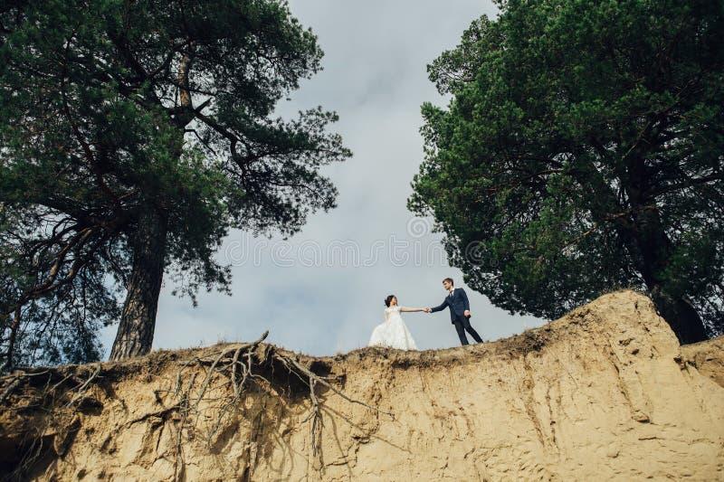 Πρόσφατα το ζεύγος που φιλά tenderly μεταξύ των κομψών δέντρων στοκ εικόνες με δικαίωμα ελεύθερης χρήσης