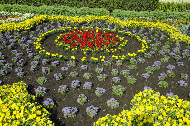 Πρόσφατα φυτευμένος διακοσμητικός στοκ φωτογραφία με δικαίωμα ελεύθερης χρήσης