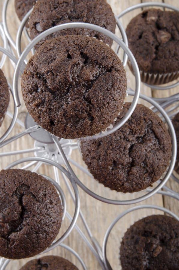 Πρόσφατα ψημένο διπλό muffin σοκολάτας στοκ εικόνες