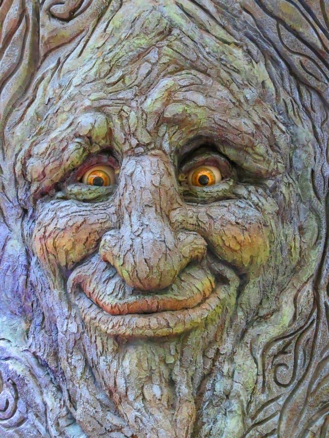Πρόσωπο δέντρων στοκ φωτογραφία με δικαίωμα ελεύθερης χρήσης