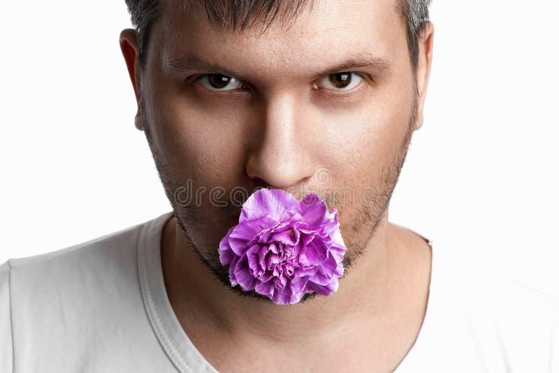 Πρόσωπο ενός ανθρώπου με ένα μωβ άνθος ενός γαρύφαλλου στο στόμα, ένα λουλούδι στο στόμα ενός ανθρώπου σε λευκό φόντο Κοντινό Η στοκ εικόνες