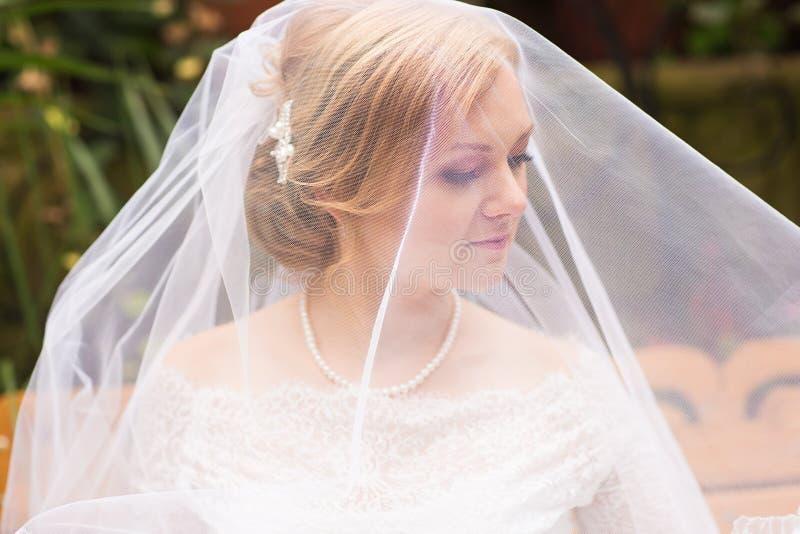 Πρόσωπο ενός όμορφου κρυμμένου νύφη πέπλου στοκ εικόνες