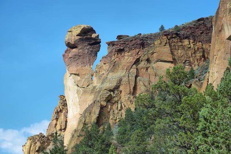 Πρόσωπο πιθήκων, πάρκο βράχου Smith στοκ εικόνα