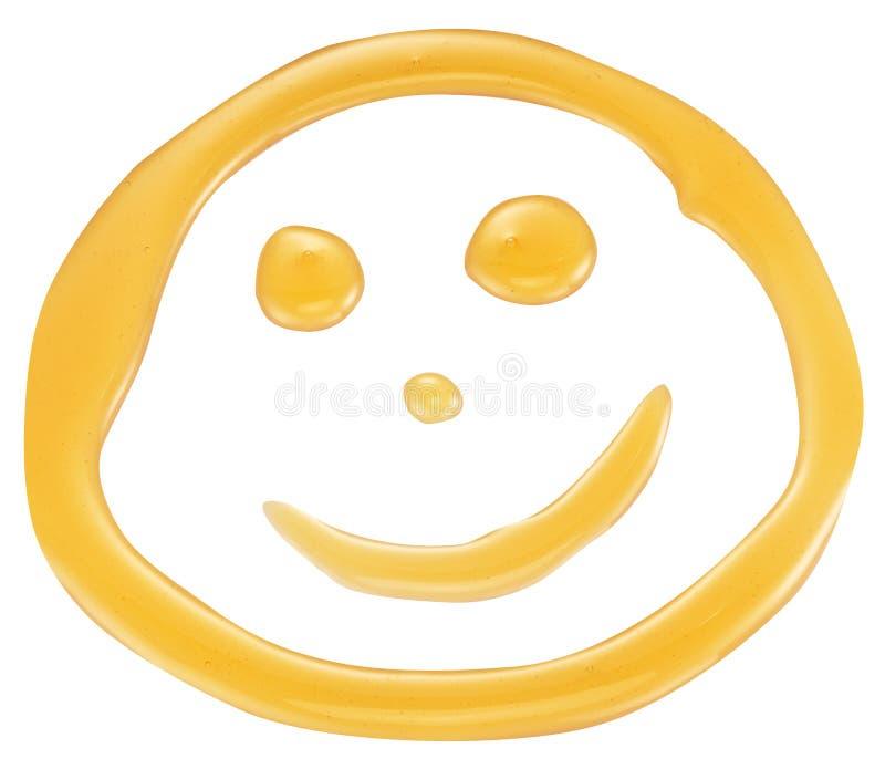 Πρόσωπο χαμόγελου μελιού στοκ εικόνες