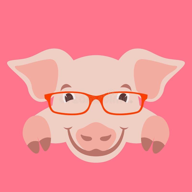 Πρόσωπο χοίρων κινούμενων σχεδίων στα γυαλιά, διανυσματικό μέτωπο απεικόνισης απεικόνιση αποθεμάτων