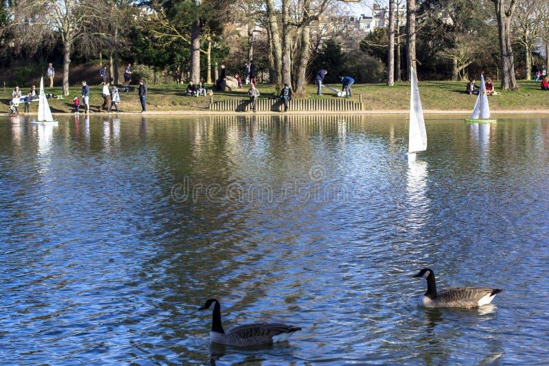Πρότυπα sailboats σε μια λίμνη σε ένα πάρκο στο Παρίσι Μύγα πουλιών, περίπατος γονέων με τα παιδιά, χήνες σε μια λίμνη στοκ εικόνες
