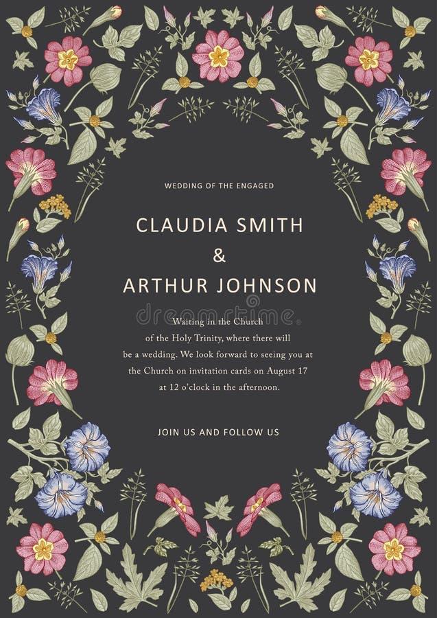 πρότυπο άνευ ραφής Ρεαλιστικά απομονωμένα λουλούδια Εκλεκτής ποιότητας hibiscus ηλιοτροπίων υποβάθρου διάνυσμα χάραξης σχεδίων pr απεικόνιση αποθεμάτων