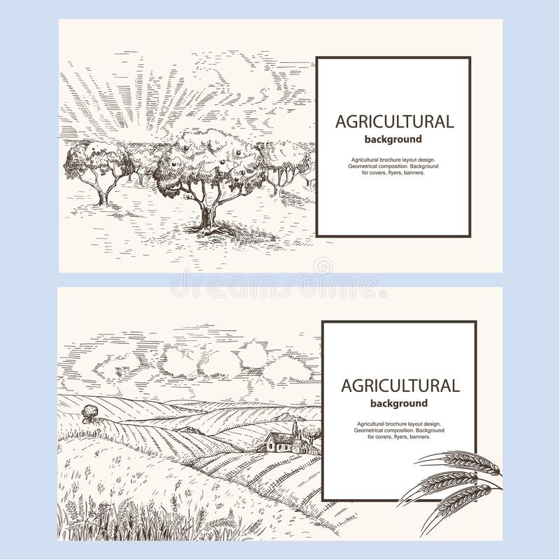 Πρότυπο για το οριζόντιο έμβλημα Διανυσματική εικόνα ενός οπωρώνα Τοπίο με τα σπίτια σίτου τομέων και χωριών r απεικόνιση αποθεμάτων
