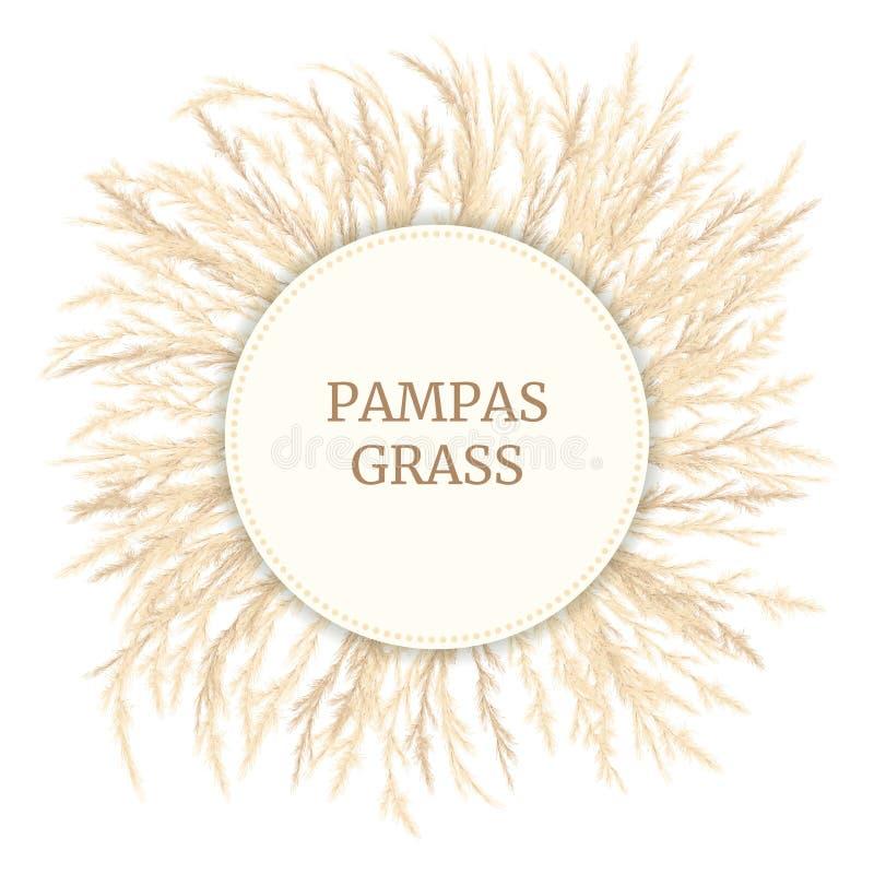 Πρότυπο κάρτας χλόης με χρυσά πάνελ με κενό Απεικόνιση διανύσματος Σήμα κυκλικού κύκλου Διακοσμητικό γρασίδι στοκ φωτογραφία με δικαίωμα ελεύθερης χρήσης